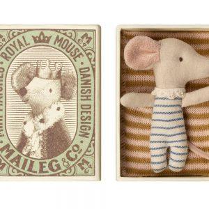 Bébé souris mâle dans sa boîte